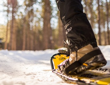 Six Great Places to Snowshoe Wisconsin