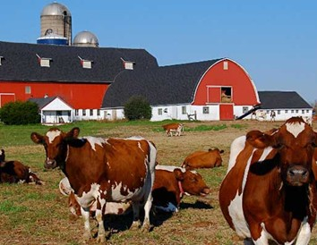 Farm Stay Vacations in Wisconsin