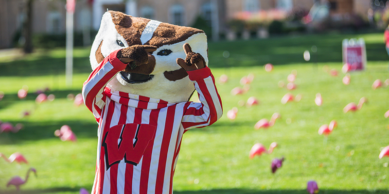 How Wi Became The Badger State Travel Wisconsin Miss dig 811 uses cisco customer journey platform to centralize its. how wi became the badger state travel