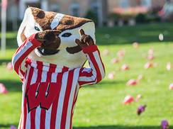 Image for Badger State: The History Behind Wisconsin's Name
