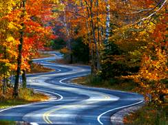 Image for 3 Fantastic Fall Color Drives in Door County