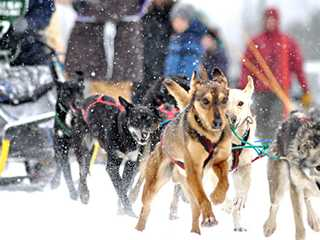 Whimsical Wisconsin Winter Activities