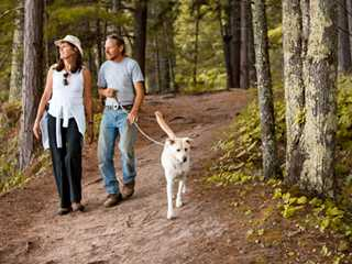 5 Fall Hikes Perfect for Your Pup