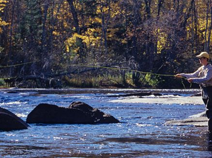Image for 6 Top Trout Fishing Spots in Wisconsin