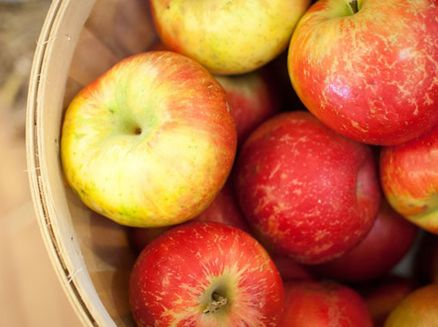 Image for Edible Travel Green Wisconsin – Apple Orchards, B&Bs and Cafés