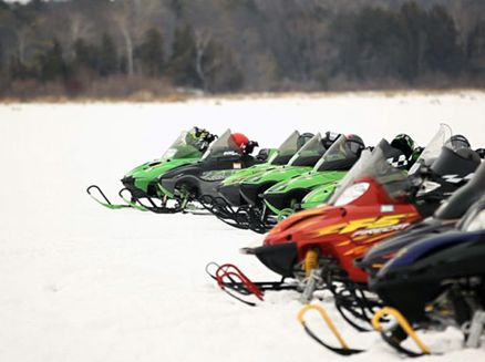 Image for These Sleds Are Made for Fun