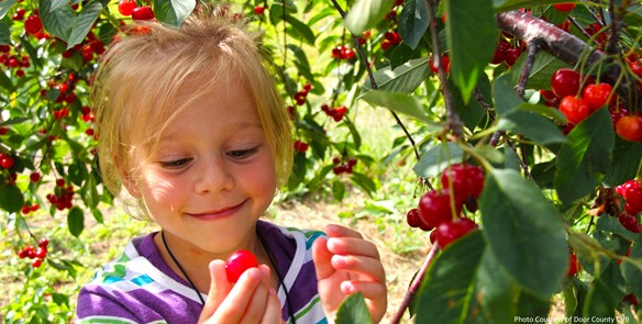 10 Pick-Your-Own Fruit Farms in Wisconsin