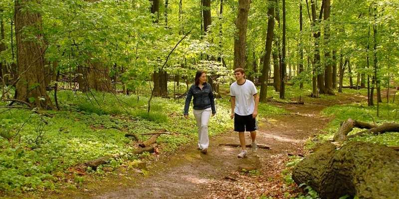 Ripon's hiking trails offer a great opportunity to enjoy nature peacefully.