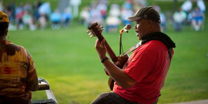 A musician performs live music for a lawn full of spectators.