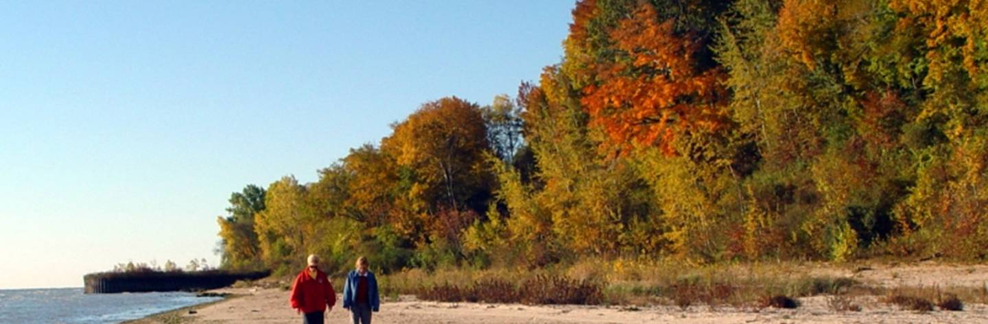 Walkers enjoy a fall stroll along the beach.