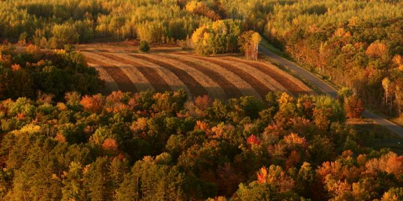 The leaves begin to change color in the beautiful countryside.