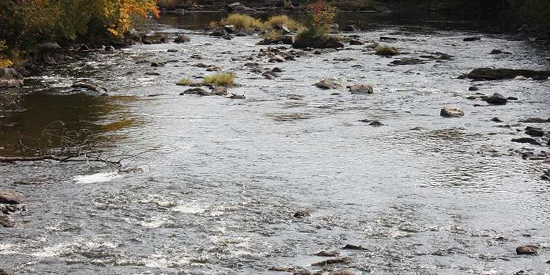 The beautiful Wolf River flows over rocks in a shallow portion.