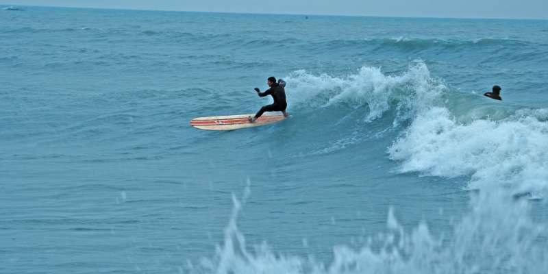 Surfers catch a wave in Lake Michigan.