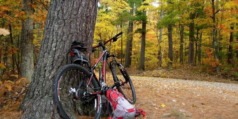 A bike ride is the perfect way to enjoy the beautiful fall foliage.