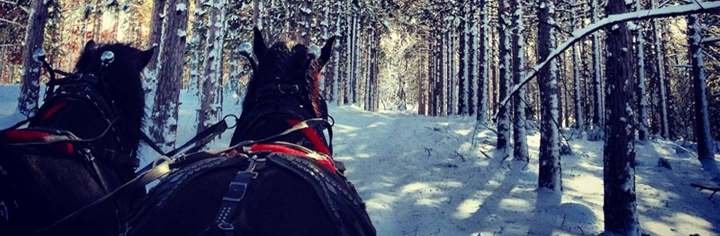 Sleigh Ride at Wild West Campground & Corral