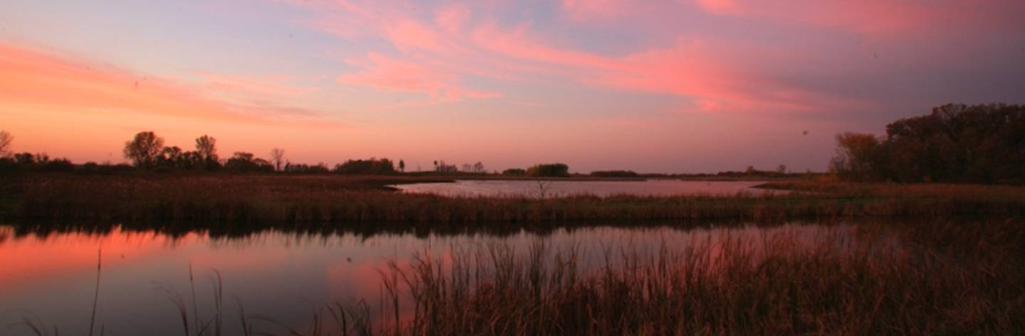 Horicon Marsh is designated a Wetland of International Importance by the Ramsar Convention of the United Nations.