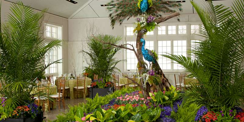 The Paine's new conservatory features an elaborate floral installation as part of Rooms of Blooms.