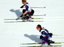 Image for 2015 International Paralympic Nordic Skiing World Championships