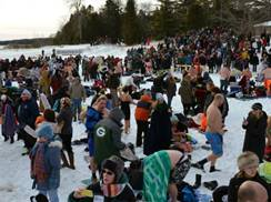 Image for Polar Bear Swim