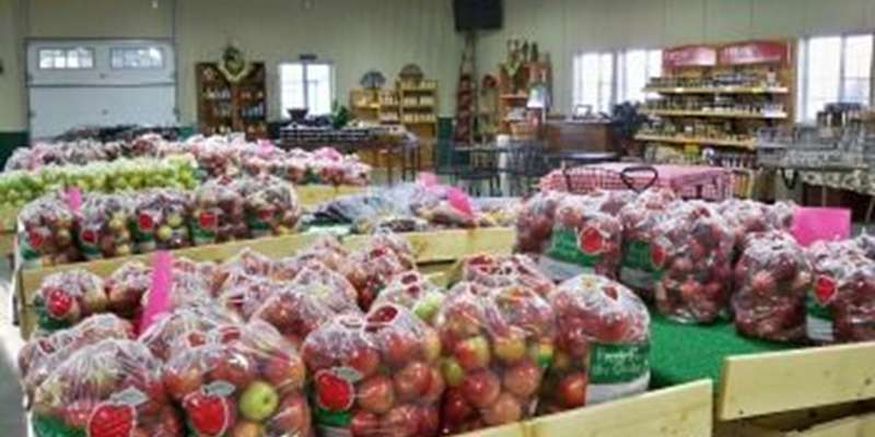 Over 20 varieties of apples for sale.