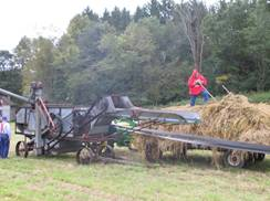 Image for Threshing Bee