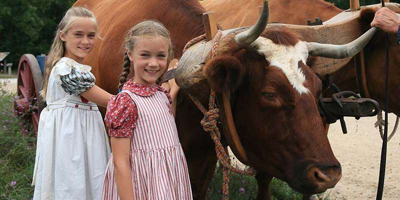 Two Laura Ingalls Wilder fans meet Old World Wisconsin's oxen team