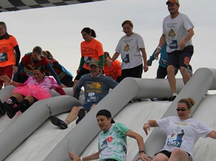 Image for Insane Inflatable 5K