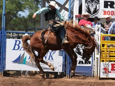 Image for Mid-Western Rodeo