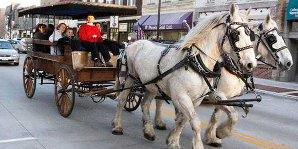 Free carriage rides through downtown are a feature of Spring Gallery Night.