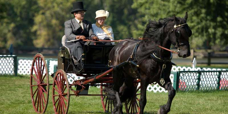 A nattily dressed couple driving their horse-drawn carriage at the annual Villa Louis Carriage Classic
