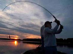 Image for Chamber Walleye Tournament
