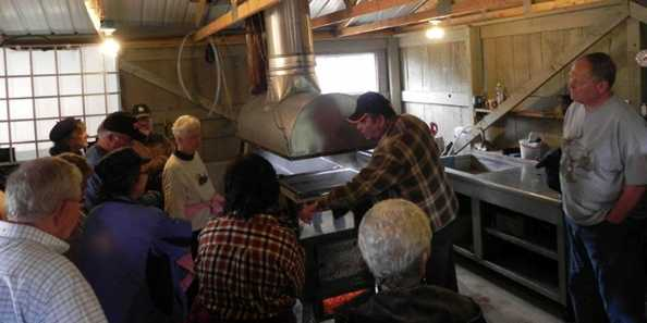 Take a tour of local sugar bushes and learn how Maple Syrup is made.