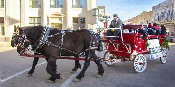 Free Horse Drawn Wagon Rides