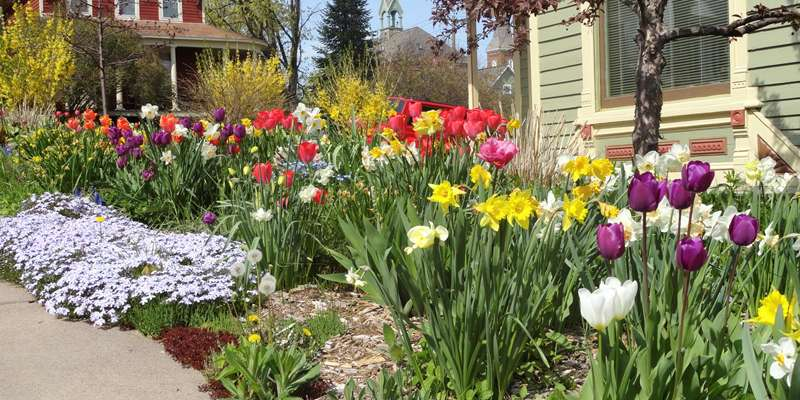 Bayfield Garden Tours