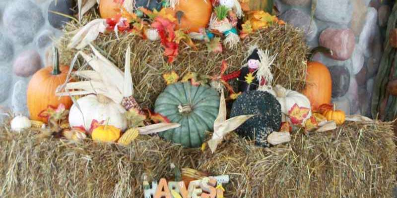 Siren businesses highlight the fall bounty as a part of their Harvestfest decor.