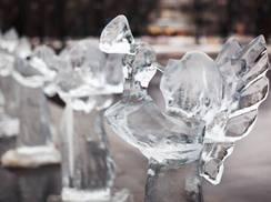 Image for Ice Festival