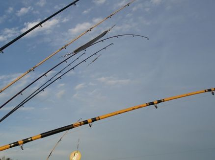 Image for South Shore Lions Club Fishing Contest