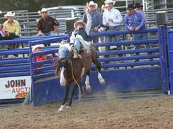 Image for Jackson County Fair