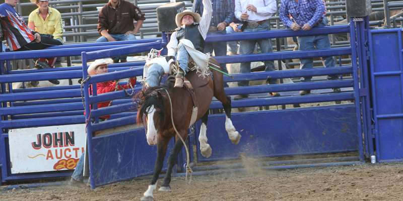 Jackson County Fair Rodeo