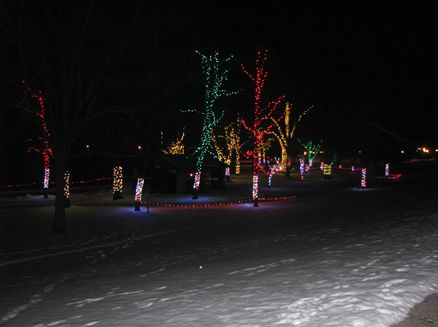 Image for Rotary Lights in the Park