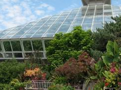 Image for Olbrich Gardens: Cocktails in the Conservatory