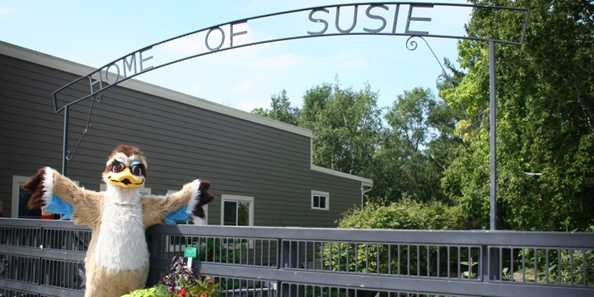 Welcome to the Home of Susie the Duck, come help her celebrate her special Day!