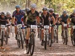 Image for Deer Fly Chase Mountain Bike Race