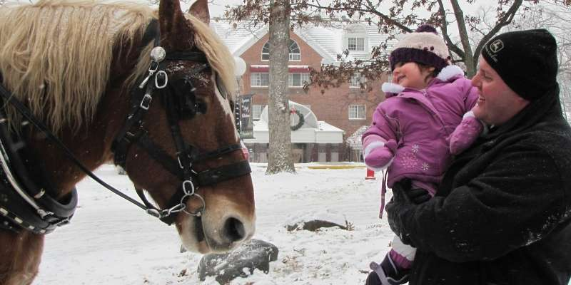 Sleigh Ride During Experience the Magic of Christmas