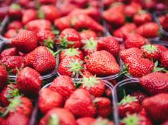 Image for Strawberry Fest at the Fitchburg Farmer's Market