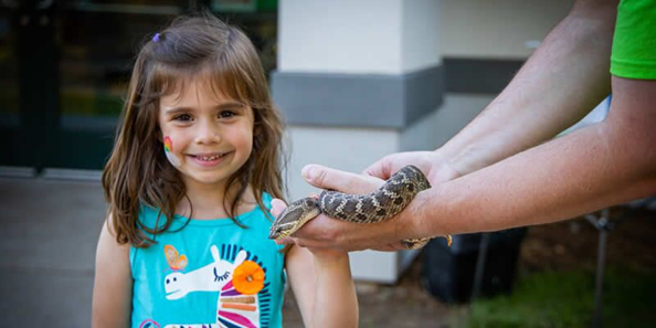 Touch a Truck and animal encounters