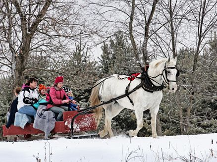 Image for Winter Festival at the Kickapoo Valley Reserve