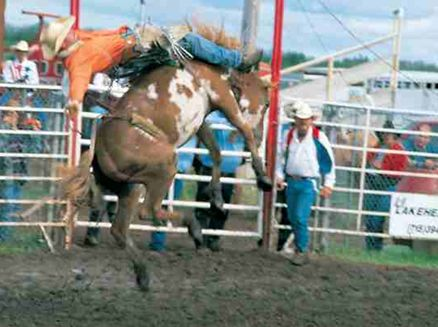 Image for Great Northern Classic Rodeo