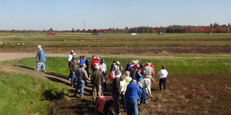 Cranberry Marsh Tours