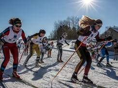 Image for 2016 USSA Cross Country Skiing Junior National Championships